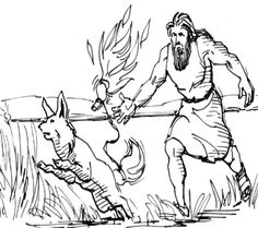 Samson lights the foxes tails on fire. This coloring page will help you prepare your Sunday school lesson on Judges 13:1 - 16:31 on the Bible story of Samson.