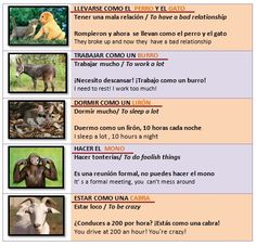 Expresiones idiomáticas con animales (II)/  Idiomatic expressions with animals (II)