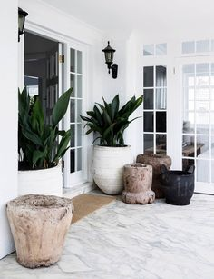 5 indoor plant trends taking over the fiddle leaf fig in 2020 Sick of seeing fiddle-leaf fig trees everywhere? We uncover the latest indoor plant trends that are sure to are find a place in every fashionable interior in Home Remodeling, Cheap Home Decor, House Interior, Potted Plants, Indoor Tropical Plants, Plant Decor, Art Deco Home, Indoor, Indoor Plants