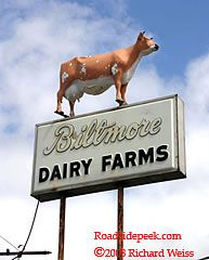 Biltmore Dairy > TGI Friday's
