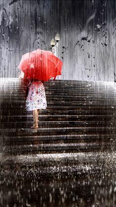 Летний дождь by alex_ domorad / 500px