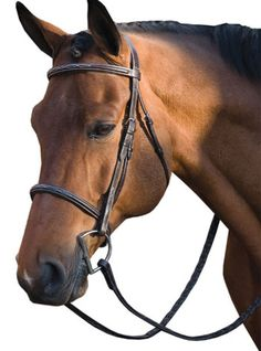 M. Toulouse Platinum Padded Raised Fancy Bridle with Fancy Stitched Reins | ChickSaddlery.com