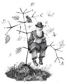 bnn.io - mnn.io - snn.io - dnn.io  . add a caption charles darwin,  tree of life
