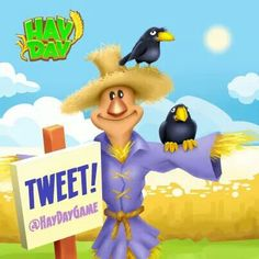 Twitter hay day