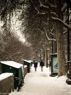 Bouquinistes in winter // Paris
