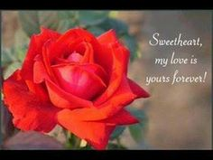 ▶ June Lodge - Someone Loves You Honey (romantic reggae) - YouTube