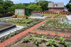 ROOFLITE SOIL Lightweight soil that will keep your rooftop garden where it belongs — on the roof.