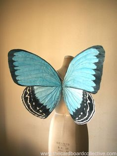 Beautiful recycled cardboard blue butterfly wings by Amber at The Cardboard Collective