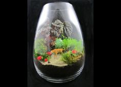 Terrariums-just bought a venus fly trap and looking around for cool ideas!