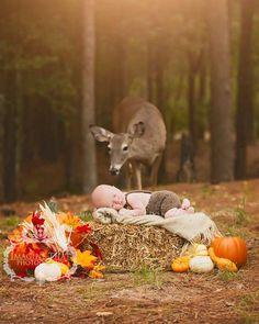 En la primera sesión de fotos de un bebé aparece un ciervo