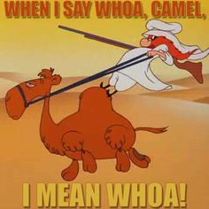 cartoons remember this Whoa camel ! Looney Tunes Characters, Classic Cartoon Characters, Looney Tunes Cartoons, Classic Cartoons, Old School Cartoons, Old Cartoons, Funny Cartoons, Retro Cartoons, Funny Memes