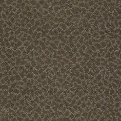 Color: 00505 Bourbonnais Grey CCS20 Capellini - Shaw Caress Carpet Georgia Carpet Industries