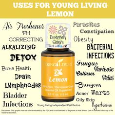 Young Living Essential Oils: Lemon Want to sign up with Young Living as a wholesaler? Become a member with me, #1852203 https://www.youngliving.com/signup/?sponsorid=1852203&enrollerid=1852203