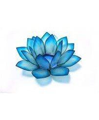 Tattoo Afbeeldingsresultaat Voor Blue Lotus Tattoo Click To See More Blue Lotus Tattoo Lotus Tattoo Blue Lotus Flower