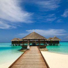 "349 Likes, 8 Comments - Maafushivaru (@maafushivaru_mv) on Instagram: ""Greetings from the sunny side of life ☀️⛱ #maafushivaru #ig_travel #vacation #holiday #bluesky…"""