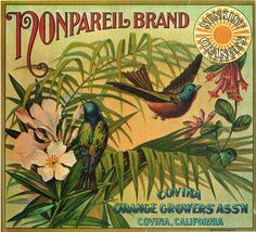 Nonpariel Brand Oranges, Covina, California