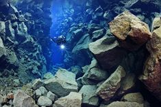 Iceland's PADI 5 Star Dive Center offers a variety of Diving & Snorkeling Tours in Iceland. Scuba dive or snorkel Silfra or other dive tours in Iceland. Iceland Tour Packages, Tours In Iceland, Iceland Travel, Thingvellir National Park, Diving Course, Scuba Diving Gear, Day Tours, Travel Goals, Family Travel