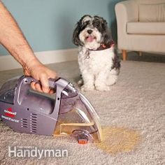 Eliminate pet stains and odors quickly after the accident by using this simple vacuum technique plus special bio-enzyme cleaners. Solve the problem in 5 minutes.