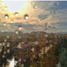 rain, elche,
