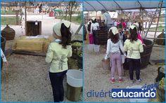 Autunno è tempo di Vendemmia! Vieni a scoprire il meraviglioso laboratorio della Vendemmia! Il progetto si propone come occasione per vivere un'esperienza ludica e di apprendimento attraverso una stimolazione sensoriale completa, in un clima di partecipazione e collaborazione per favorire autonomia nel fare.  PER SAPERNE DI PIU':http://diverteducando.it/prodotto/portiamo-i-bambini-fattoria/la-vendemmia   #vendemmia #viaggi #scuole #fattoria #gite #diverteducando #campania #allascoperta