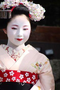 momo-chan# miyagawacho