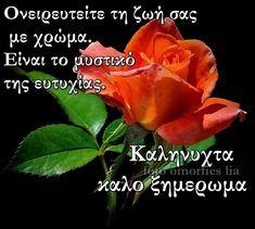 Good Night, Spirituality, Flowers, Plants, Nighty Night, Spiritual, Plant, Royal Icing Flowers, Good Night Wishes