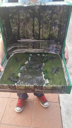 Alligator Diorama in a Shoebox