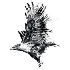 eagle tattoo - Поиск в Google