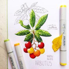 Second day in #Napoli and I want to show you strawberry tree :) Вчера гуляла по неапольским гейзерам и вся моя Пандора стала жёлтой :( Зато встретила необычное растение - земляночное дерево :)