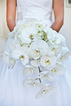 GORGEOUS orchid bouquet