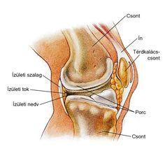 fájdalom a térdízület kezelése