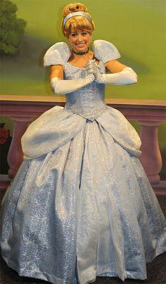 Cinderella Adult Costume Walt Disney Princess Cosplay