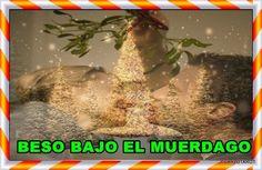 El muérdago y el acebo  https://www.cuarzotarot.es/navidad/muerdago-y-acebo #FelizJueves #Navidad #Christmas #LoteriaNavidad