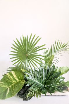 Palm fronds | Wedding & Party Ideas | 100 Layer Cake