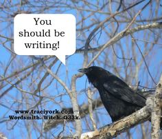Image - Bigs the crow, by Traci York; Quote - You should be writing