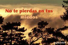 #frases de #AnaLombard #idstress #gestionestres #calma #relax #emociones #comunicacion #crecimientopersonal #bloqueo #miedo enlacebcn.com idstress.com