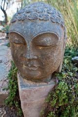 desert zen gardens on Pinterest Landscapes Xeriscaping