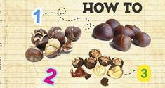 How to roast chestnuts Greek Desserts, Greek Recipes, Chestnut Puree Recipe, Roasted Chestnuts, Most Popular Recipes, Cookies Policy, Baking Pans, Holiday Recipes, Cooking Tips