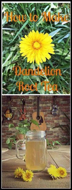 Learn how to make dandelion root tea from annoying weeds in your garden. Turn dandelion roots into medicinal tea. #dandeliontea #herbaltea #medicinaltea #dandelionherb #dandelionroot #dandelionroottea #dandelioncleanse #cleansingtea #holisitchealth #naturalremedies #homestead #harvestingdandelionroot