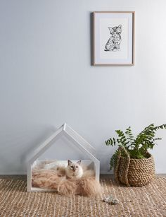 How to make a cute cat bed for your furry friend - Homes To Love Cat Wallpaper Iphone, Crazy Cat Lady, Crazy Cats, Cute Cat Drawing Easy, Cat Anime, Cute Cat Names, Cat Aesthetic, Pet Furniture, Office Furniture