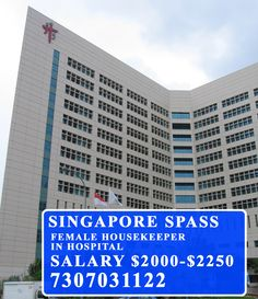 Pin by European Overseas Services Pvt  Ltd  on Singapore