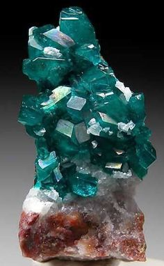 "Dioptase ~  Chakra: Heart  It's a called a stone of ""Living in the Moment"".  Physically, dioptase is used in crystal healing for heartburn, physical heart problems, meniere's disease, and deep healing in general.  Image: marinmineral Text: meanings.crystalsandjewelry"