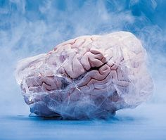 Indianapolis Man Steals Brains Of Dead Mental Patients, Sells Them On Ebay