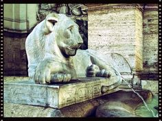 Lion Fontaine in Rome, Italy