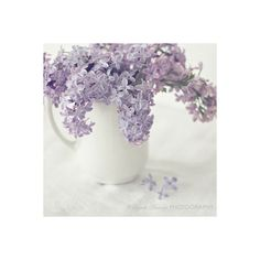 What a Beauty ❤ liked on Polyvore featuring backgrounds, flowers, icons, inspiring and pastel