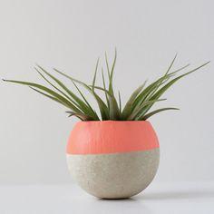 Mini Air Plant Pod melon color