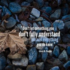 """""""When adversity comes, don't let something you don't fully understand unravel everything you do know. Be patient, cling to truth; understanding will come."""" From Elder Pearson's http://lds.org/church/leader/kevin-w-pearson April 2015 http://facebook.com/223271487682878 message http://lds.org/general-conference/2015/04/stay-by-the-tree #LDSconf #ElderPearson #ShareGoodness"""