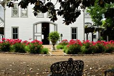 A one-of-a-kind experience awaits at Nashville's Belle Meade Plantation. Join Home Editor Zoe Gowen on a tour of the mansion built in 1853. The group will enjoy music and mint juleps on the shaded back porch and hear about how the drink became a Southern standard. #NashvilleNow #Nashville #MusicCity