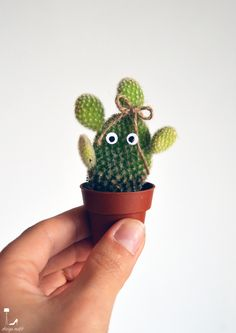 Urban Jungle Bloggers: My Plant Gang by @designoutfit