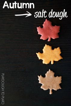 Autumn Salt Dough Recipe for Arts and Crafts Projects. Warm and spicy scents. Perfect for fall kids' crafts!